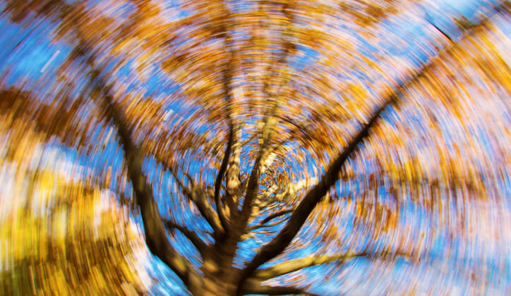 8 reasons you keep getting dizzy | Considerable
