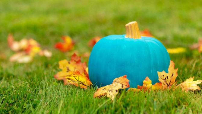 What it means when you see a teal pumpkin while trick-or-treating